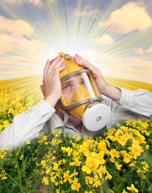 Finding the Right Treatment for Your Hay Fever Symptoms