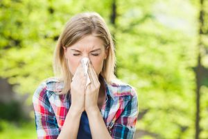 Has Hay Fever Got You Down? Speak to an Allergist Who Can Help You Find Relief